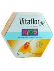 Vitaflor geléia real crianças ampolas que você pode beber 10 ml 20 ampolas