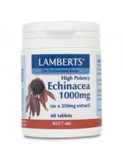 Equinacea 1000 mg (proporcionando 4% de compostos fenólicos) 60 comprimidos lamberts