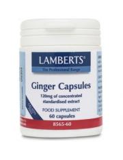 gengibre 1200 mg (Extra concentrada, equivalente a 14,400 mg gengibre fresco) 60 capsulas lamberts