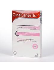 Canesflor 10 cápsulas vaginales